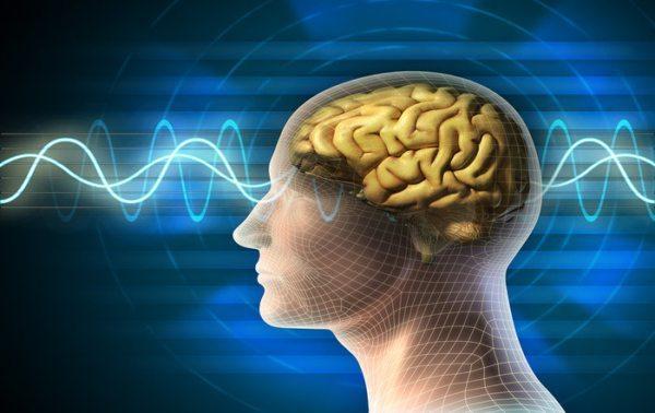 Karl Hecht – Health Implications of Long-term Exposure to Elektrosmog