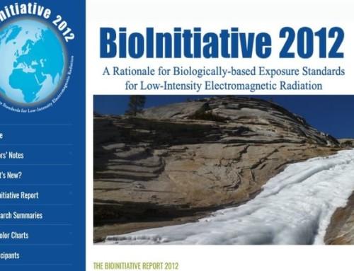 Bioinitiative-rapporten oversatt til dansk