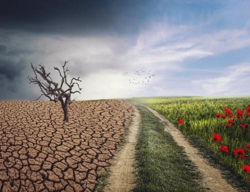Hvilken rolle spiller strålingen fra trådløs teknologi i drivhuseffekten?